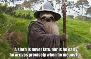 Sloth Meme - A Sloth Is Never Late, Nor Is He Early, He Arrives Precisely When He Means To.