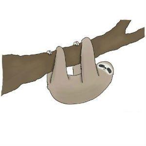 Sloth Meme - Feature Image