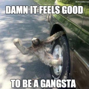 Sloth Meme - Damn It Feels Good To Be A Gangsta