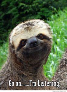Sloth Meme - Go On, I'm Listening.