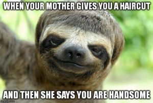 Sloth Meme - When Your Mother Gives You A Haircut And Then She Says You Are Handsome