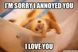 Sloth Meme - I'm Sorry I Annoyed You, I Love You.