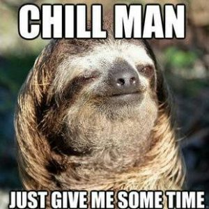 Sloth Meme - Chill Man, Just Give Me Some Time.