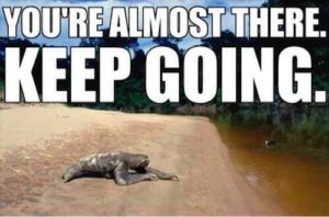 Sloth Meme - You're Almost There. Keep Going.