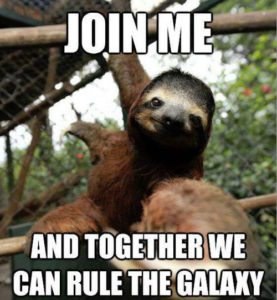 Sloth Meme - Join Me And Together We Can Rule The Galaxy.