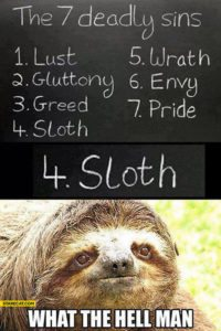 Sloth Meme - The 7 Deadly Sins: Lust, Gluttony, Greed, Sloth, Wrath, Envy, Pride. What The Hell Man.