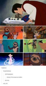 Sloth Meme - Disney Princesses As Sloths. Buy Why? Why Not.