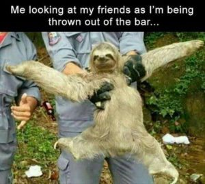 Sloth Meme - Me Looking At My Friends As I'm Being Thrown Out Of The Bar.