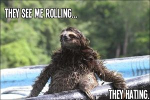 Sloth Meme - They See Me Rolling... They Hating.