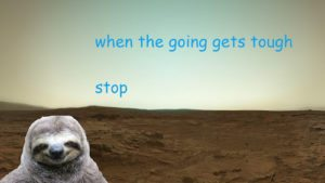 Sloth Meme - When The Going Gets Tough, Stop.