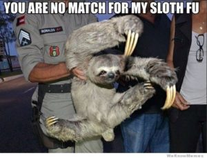 Sloth Meme - You Are No Match For My Sloth Fu.